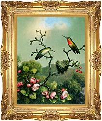 Martin Johnson Heade Ruby Throat Of North America canvas with Majestic Gold frame