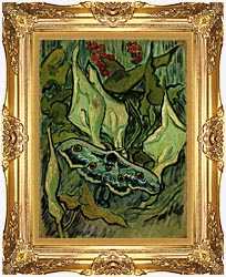 Vincent Van Gogh Emperor Moth canvas with Majestic Gold frame