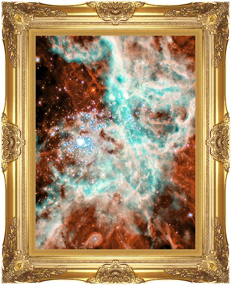Courtesy Nasa Jpl Caltech 30 Doradus Nebula in Large Magellic Cloud (Portrait Detail) with Majestic Gold Frame