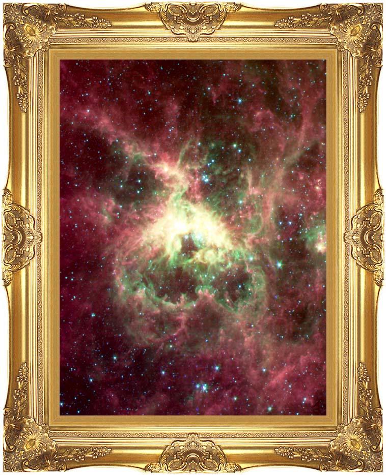 Courtesy Nasa Jpl Caltech 30 Doradus Newborn Stars of Tarantula Nebula (Portrait Detail) with Majestic Gold Frame