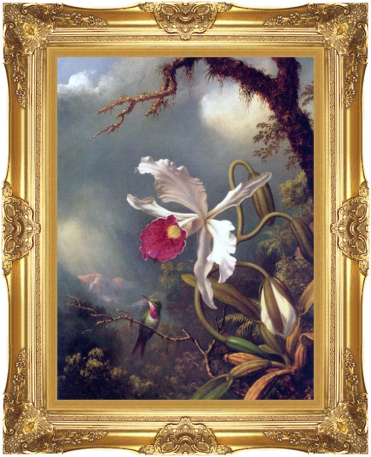 Martin Johnson Heade An Amethyst Hummingbird with a White Orchid with Majestic Gold Frame