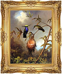 Martin Johnson Heade Black Breasted Plovercrest canvas with Majestic Gold frame