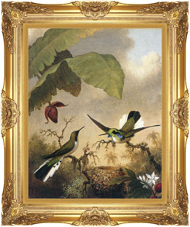 Martin Johnson Heade Black Eared Fairy with Majestic Gold Frame