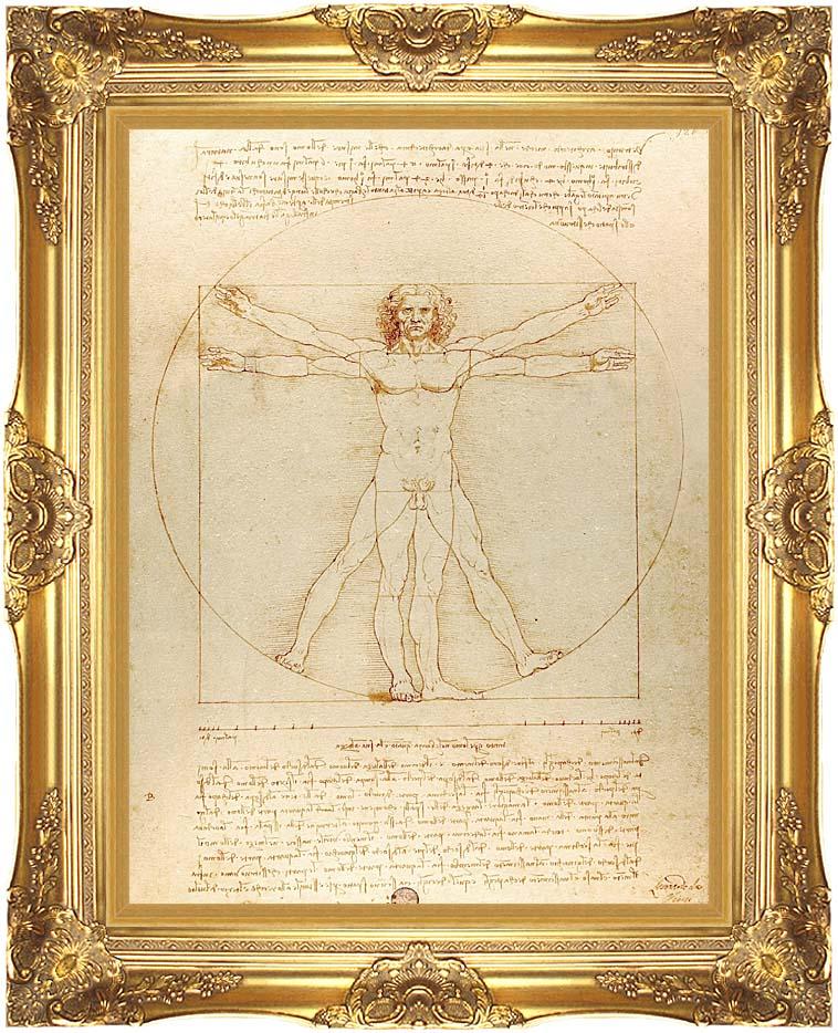 Leonardo Da Vinci Vitruvian Man with Majestic Gold Frame
