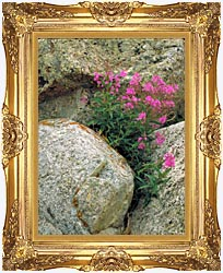 U S Fish And Wildlife Service Fireweed canvas with Majestic Gold frame