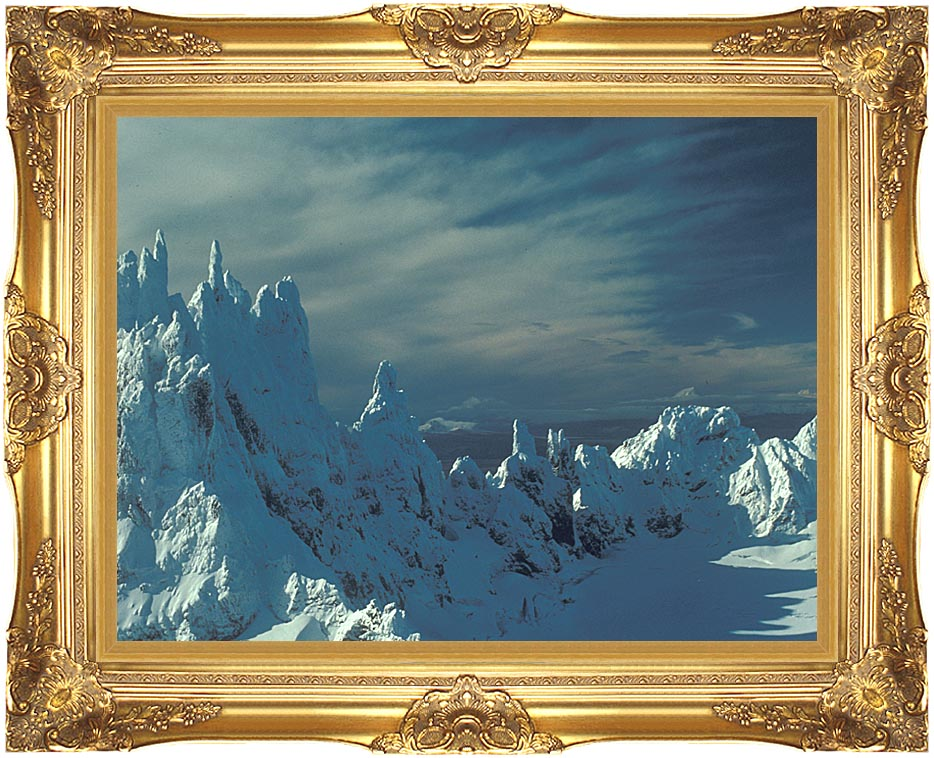 U S Fish and Wildlife Service Aghileen Pinnacles with Majestic Gold Frame