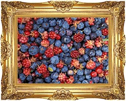U S Fish And Wildlife Service Wild Berries canvas with Majestic Gold frame