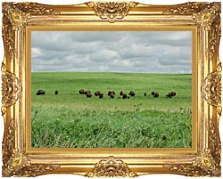 U S Fish And Wildlife Service Bison On The Range canvas with Majestic Gold frame