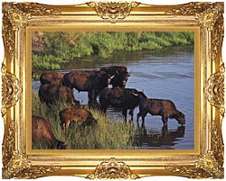U S Fish And Wildlife Service Wild Bison canvas with Majestic Gold frame