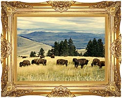 U S Fish And Wildlife Service Bison Herd canvas with Majestic Gold frame