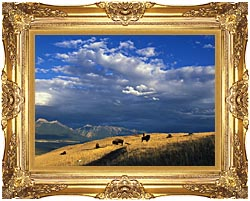 U S Fish And Wildlife Service Buffalo On The Range canvas with Majestic Gold frame