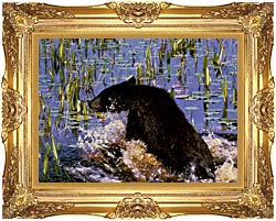U S Fish And Wildlife Service Black Bear Cub In Pond canvas with Majestic Gold frame