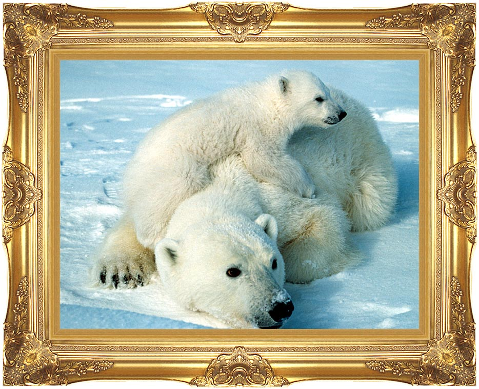 U S Fish and Wildlife Service Polar Bear with Cub with Majestic Gold Frame