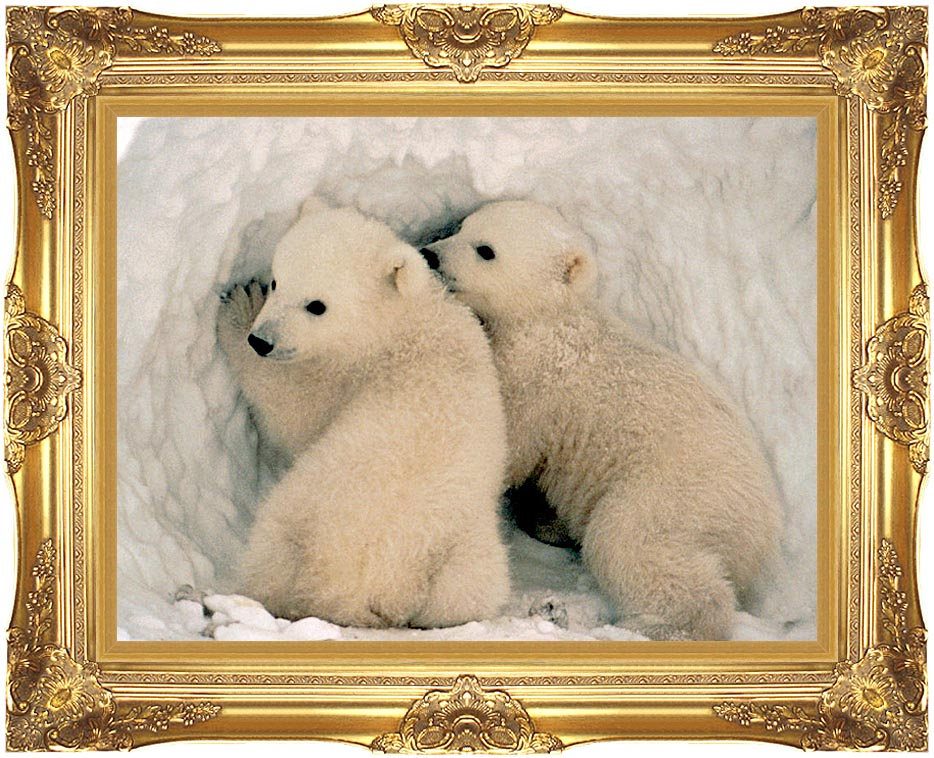 U S Fish and Wildlife Service Polar Bear Cubs with Majestic Gold Frame