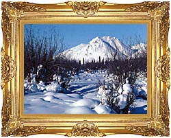 U S Fish And Wildlife Service Arctic Refuge In Winter canvas with Majestic Gold frame
