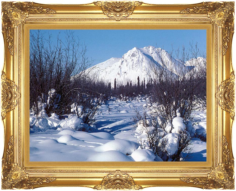 U S Fish and Wildlife Service Arctic Refuge in Winter with Majestic Gold Frame