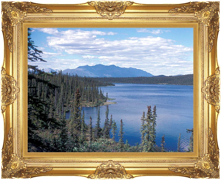 U S Fish and Wildlife Service Blackfish Lake with Majestic Gold Frame
