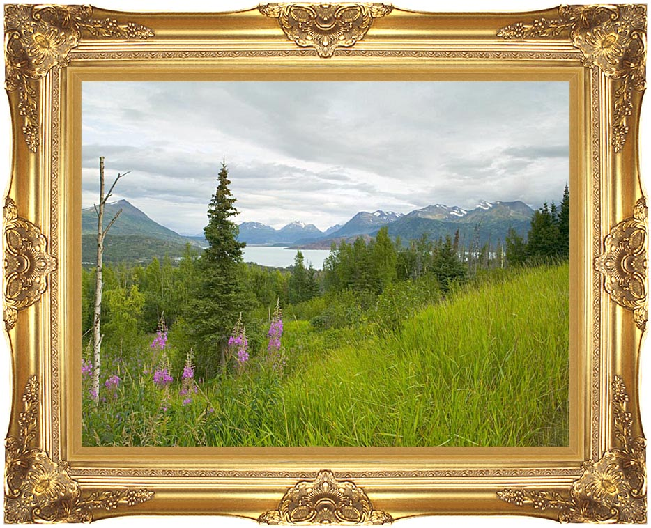 U S Fish and Wildlife Service Hillside with Fireweed with Majestic Gold Frame