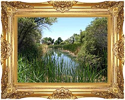 U S Fish And Wildlife Service Corn Creek Springs canvas with Majestic Gold frame