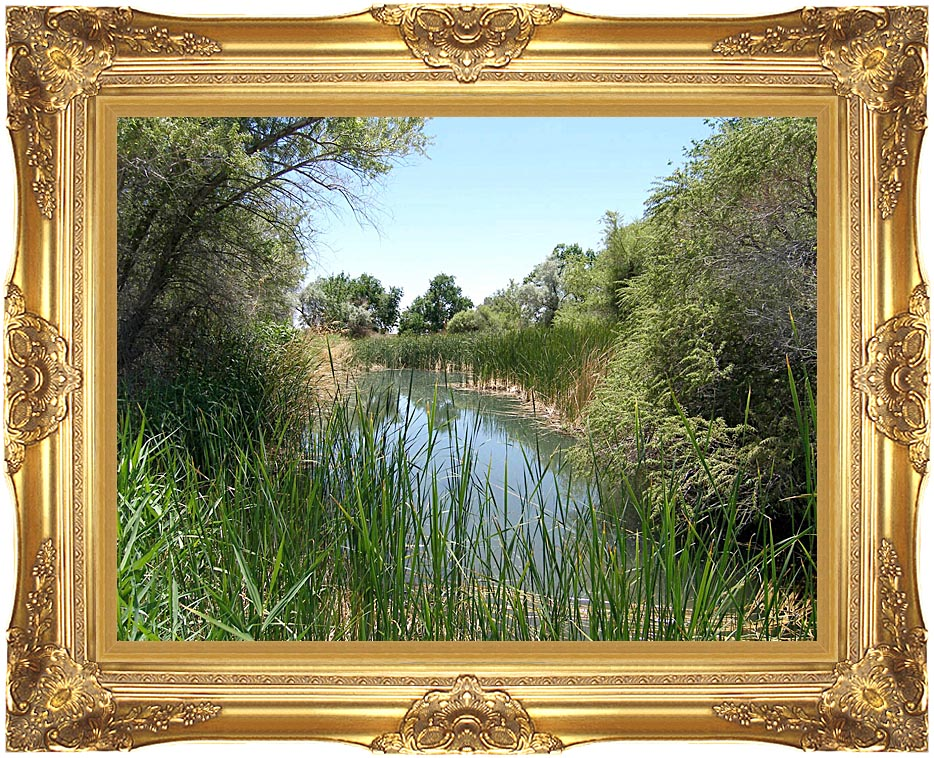U S Fish and Wildlife Service Corn Creek Springs with Majestic Gold Frame