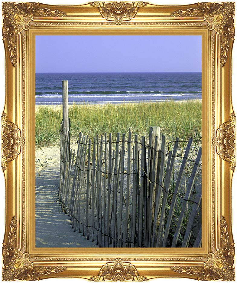 U S Fish and Wildlife Service Chincoteague National Wildlife Refuge with Majestic Gold Frame