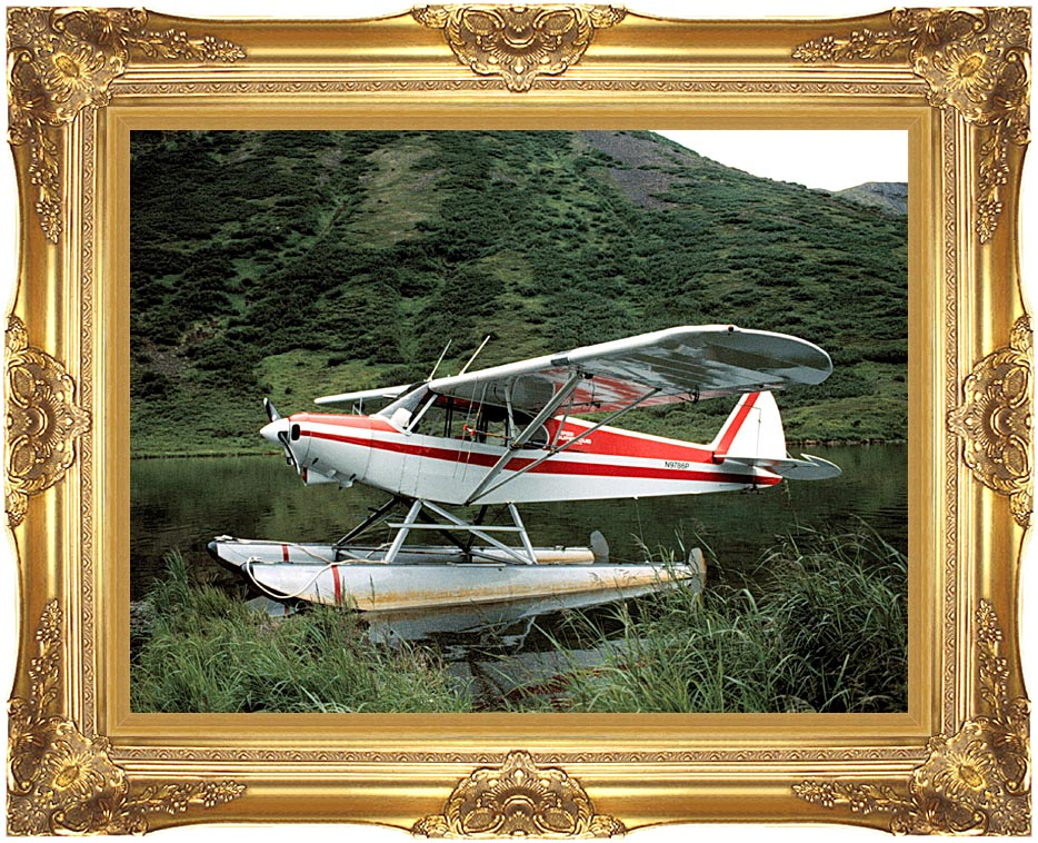 U S Fish and Wildlife Service Float Plane with Majestic Gold Frame