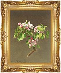 Apple Blossoms Framed Art