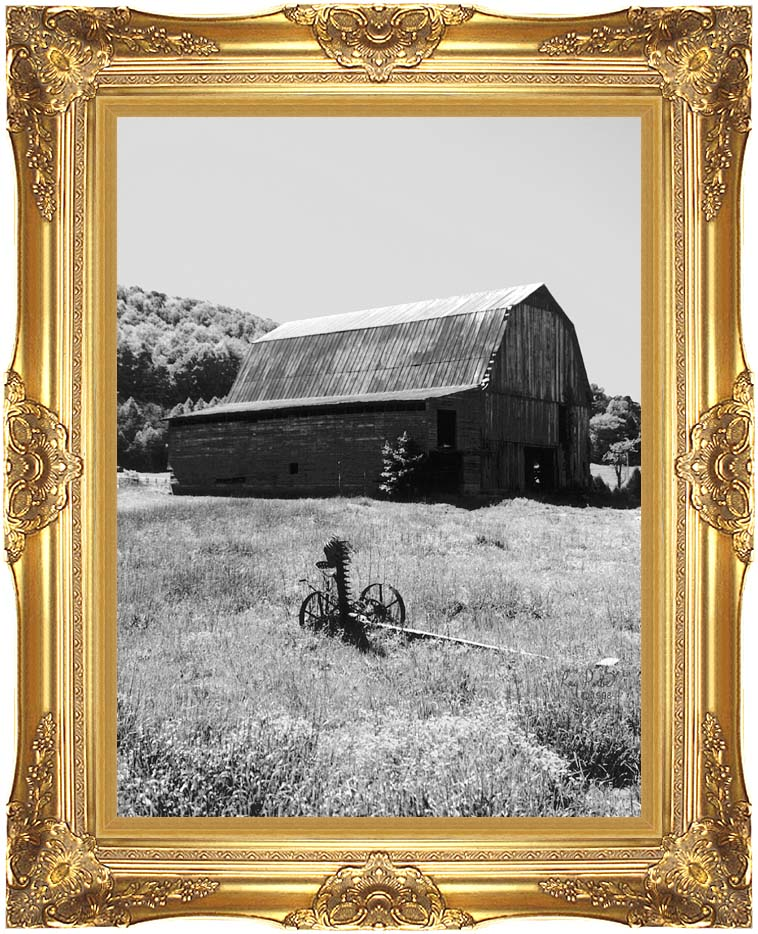 Ray Porter Country Springtime (Black and White) with Majestic Gold Frame
