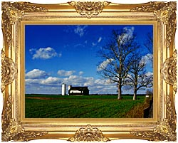 Ray Porter Uncle Buds Barn canvas with Majestic Gold frame