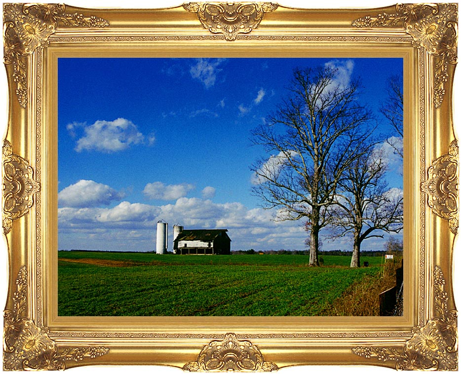 Ray Porter Uncle Bud's Barn with Majestic Gold Frame