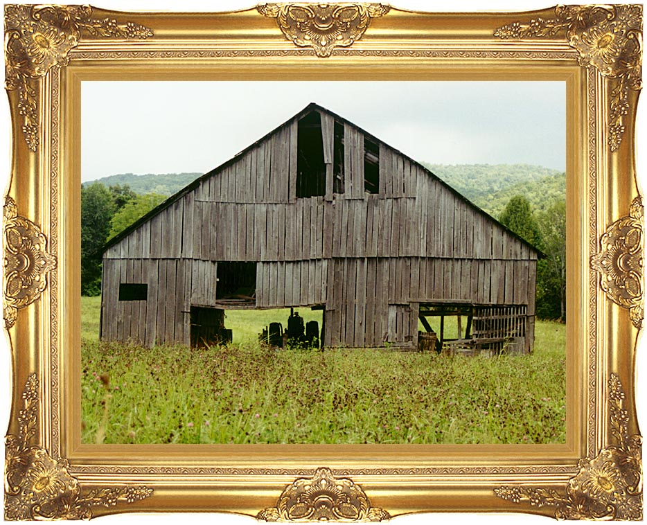 Ray Porter Tennessee Playhouse with Majestic Gold Frame