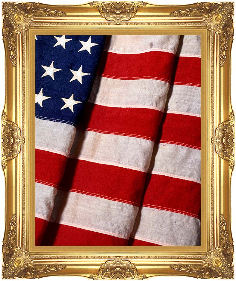Visions of America American Flag Close-up with Majestic Gold Frame
