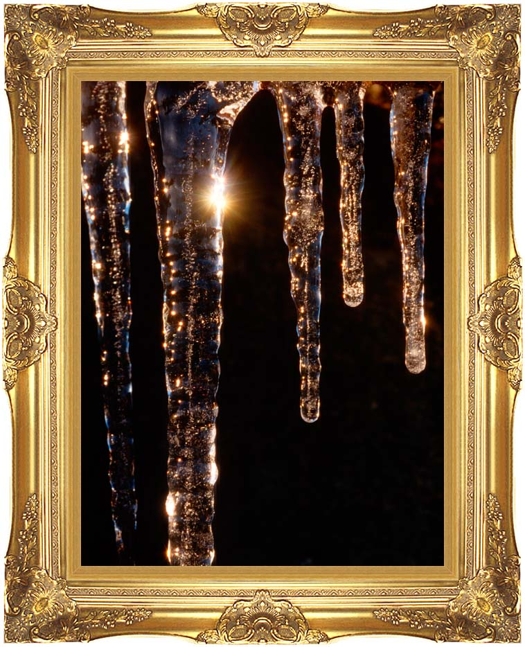 Visions of America Close-up of Icicles, Acadia National Park, Maine with Majestic Gold Frame