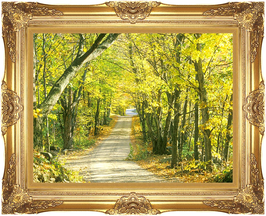 Visions of America Tree Covered Road in the Woods, New England with Majestic Gold Frame