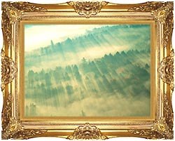 Visions of America Aerial View Of Forest On A Misty Morning Vermont canvas with Majestic Gold frame