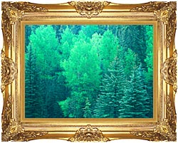 Visions of America Summer In Santa Fe National Forest New Mexico canvas with Majestic Gold frame