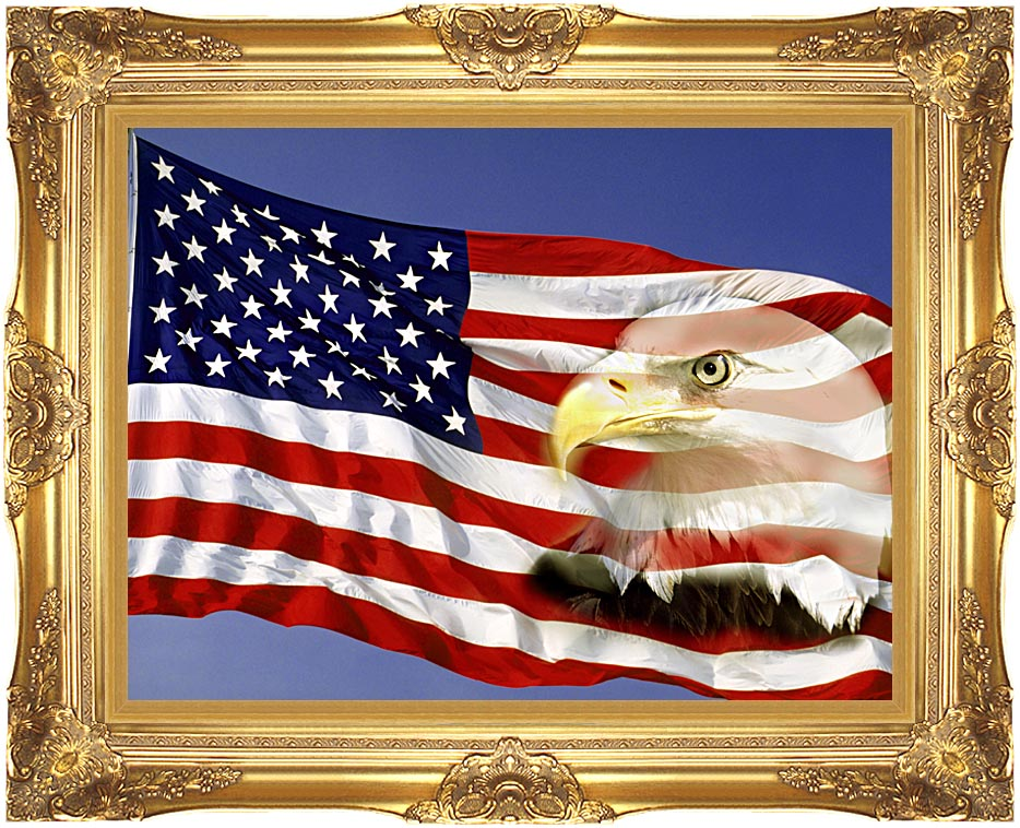 Visions of America American Flag  and a Bald Eagle with Majestic Gold Frame