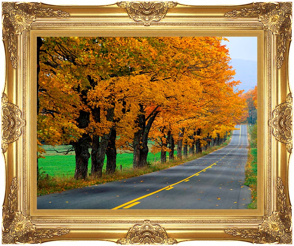Visions of America An Autumn Road in New England with Majestic Gold Frame