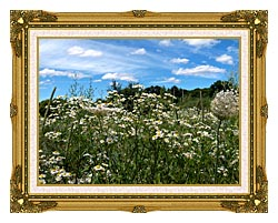 Brandie Newmon Field Of Wildflowers Easthampton Massachusetts canvas with museum ornate gold frame