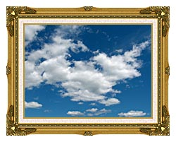 Brandie Newmon Cloudy Summer Day canvas with museum ornate gold frame