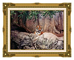 Brandie Newmon Tiger canvas with museum ornate gold frame