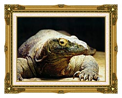 Brandie Newmon Komodo Dragon canvas with museum ornate gold frame