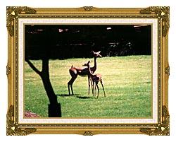 Brandie Newmon Gerenuk Antelopes canvas with museum ornate gold frame