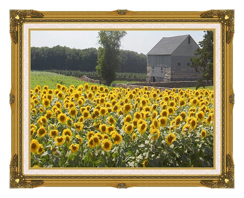 Brandie Newmon Sunflower Farm with Museum Ornate Frame w/Liner