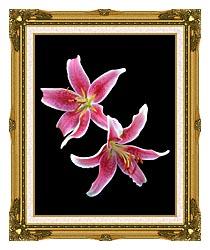 Brandie Newmon Stargazer Lily canvas with museum ornate gold frame