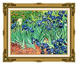 Vincent Van Gogh Irises canvas with museum ornate gold frame