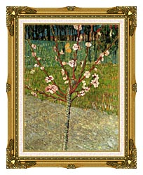 Vincent Van Gogh Almond Tree In Blossom canvas with museum ornate gold frame