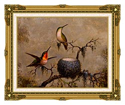 Martin Johnson Heade Hummingbirds And Their Nest canvas with museum ornate gold frame