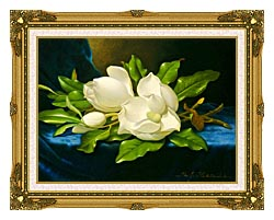 Martin Johnson Heade Magnolias On A Blue Velvet Cloth canvas with museum ornate gold frame