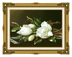 Martin Johnson Heade Magnolias Detail canvas with museum ornate gold frame